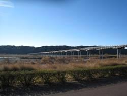 Rさわやかウォーキング「新春開運七草粥と川越遺跡を訪ねて」「ラ・カンティーナ」、そして「ラグビー観戦」