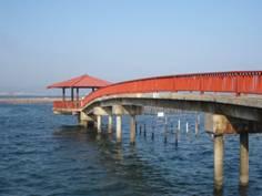 JAさわやかウォーキング「浜名湖東岸散策と『JAとぴあ浜松ふれあい農協祭』ウォーキング」
