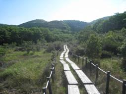 JRさわやかウォーキング「新緑の豊橋自然歩道と「葦毛湿原」を歩く」
