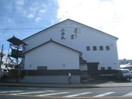 JRさわやかウォーキング「菊川どんと来い元気祭りと田んぼアート鑑賞ウォーク」、「秋味」、そして「はらこわっぱめし」