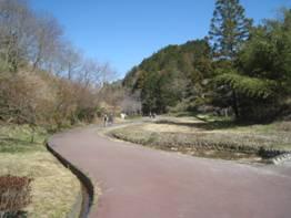 JRさわやかウォーキング「初春の河城地区を歩くお茶づくしウォーク」、そして「ぎゅっと搾りチューハイ カロり。 巨峰」