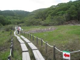 JRさわやかウォーキング「新緑の豊橋自然歩道と「葦毛湿原」を歩く」、そして「蛸つや煮」