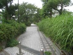 JRさわやかウォーキング「「新幹線なるほど発見デー2013」と伊場遺跡を訪ねて」
