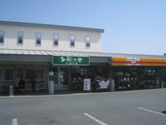 JRさわやかウォーキング「初夏を感じる「浜名湖花博2014」」「薩摩 鉄幹」「国産豚 おまかせミックス」そして、「焼めざし」