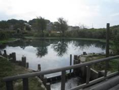 JRさわやかウォーキング「自然歩道「中央公園」散策と府八幡宮大祭」、そして「郷土のうまい! 秋田男鹿産鮭の食んべてけれ弁当」
