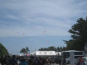 「浜松祭り」、そして「天の橋立かきくん製油づけ」