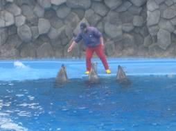 「名古屋港水族館」「浩養園」、そして「「サッポロ ヱビス華みやび」